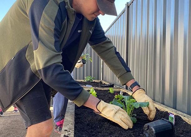 Improving the garden area